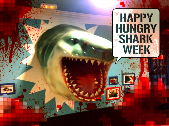 Shark Toys And Games : Popular game app hungry shark announces plush toy and